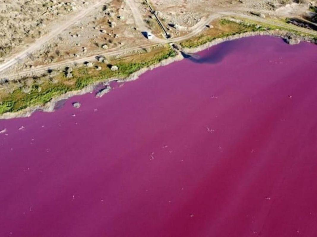 La imagen tiene un atributo ALT vacío; su nombre de archivo es Unos-desechos-pesqueros-tinen-de-rosa-unas-lagunas-en-la-Patagonia-argentina-2-1200x900-1-1067x800.jpg